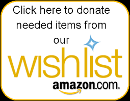 Fundraising with Amazon Wish Lists