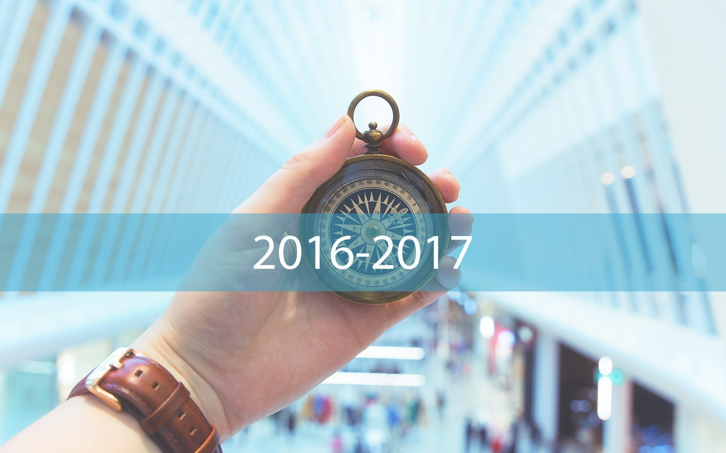 2016 -2017 State of Salesforce